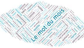 Chambre De Paris Le Mot Du Mois Definition Des Meubles